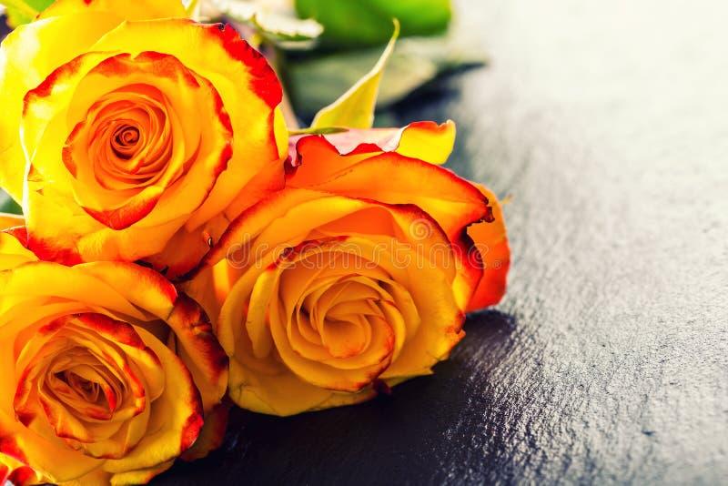 Rosa Rosa arancione Ingiallisca di rosa Parecchie rose arancio sul fondo del granito fotografia stock libera da diritti