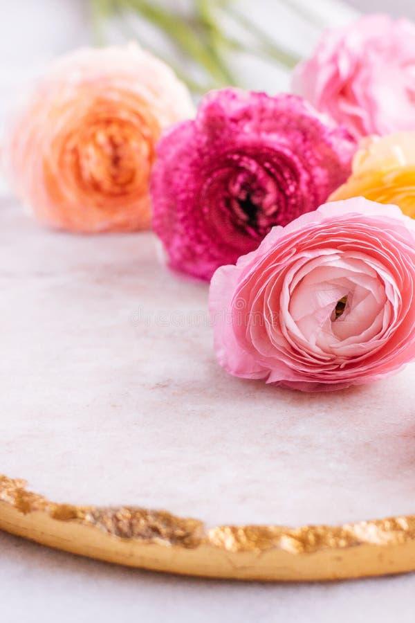 rosa rosafarbene Blumen vom Garten - Hochzeit, Feiertag und Blumengarten angeredetes Konzept stockbilder
