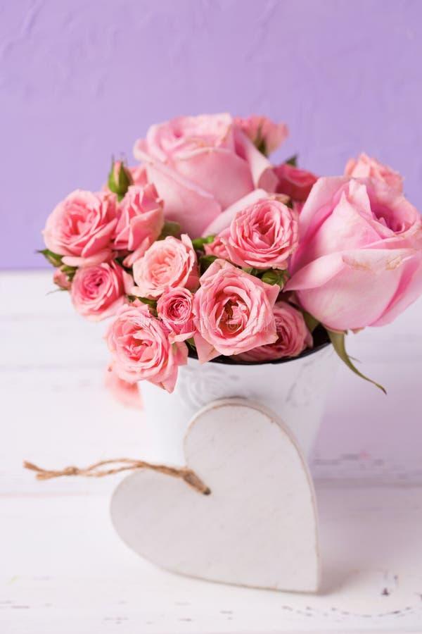Rosa rosblommor i vit kruka- och vithjärta mot viole royaltyfri bild