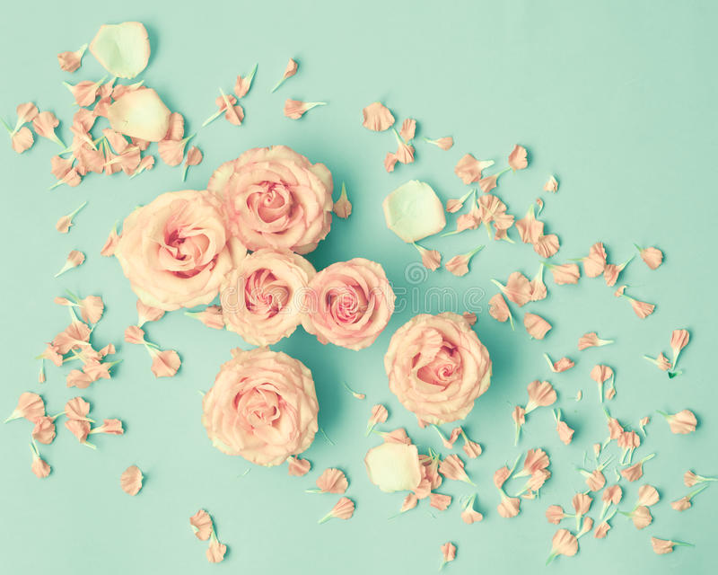 Rosa Rosen über Minze stockbild