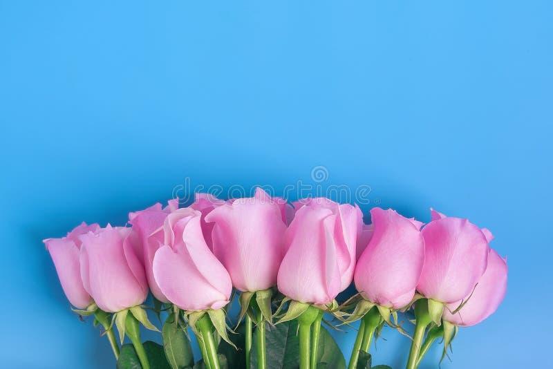 Rosa Rosen auf einem blauen Hintergrund stockbild