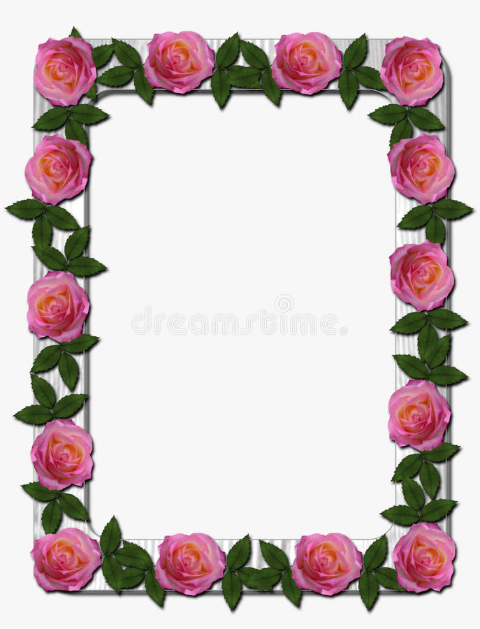 Rosa Rosen auf weißem Holzrahmen stockfotografie