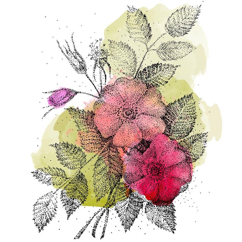 Rosa Rosen des Tees Eigenhändig zeichnen Vektorillustration kann für Schreibköpfe und anderen benutzt werden stock abbildung