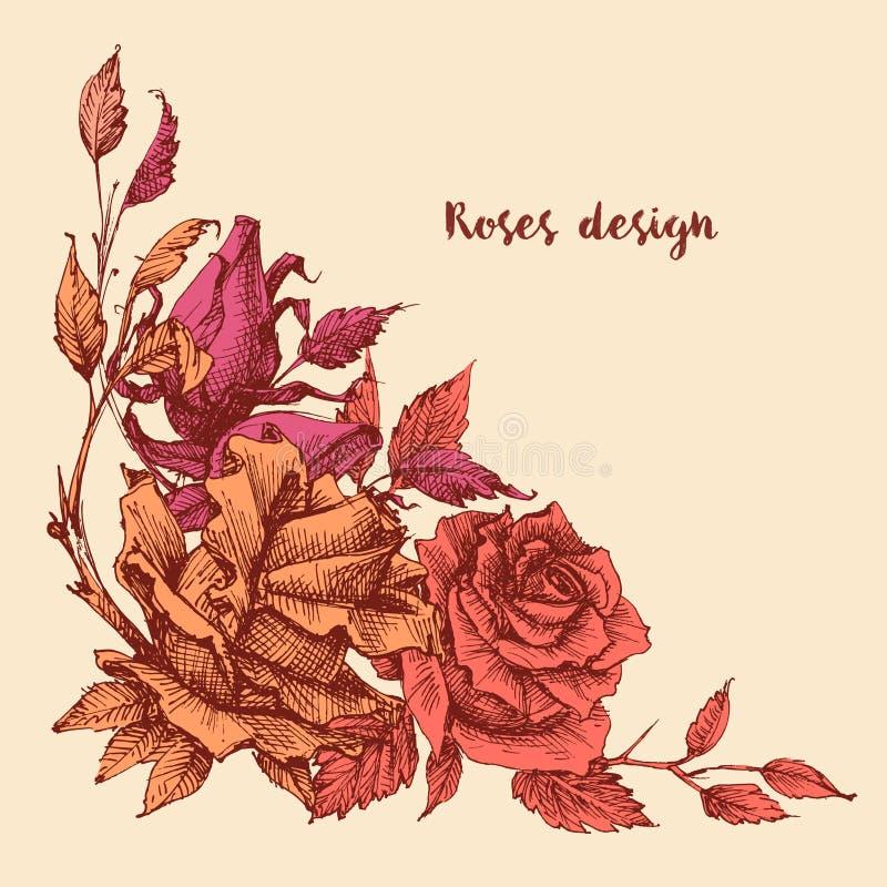 Rosa Rosenblumenstrauß-Eckenverzierung stock abbildung