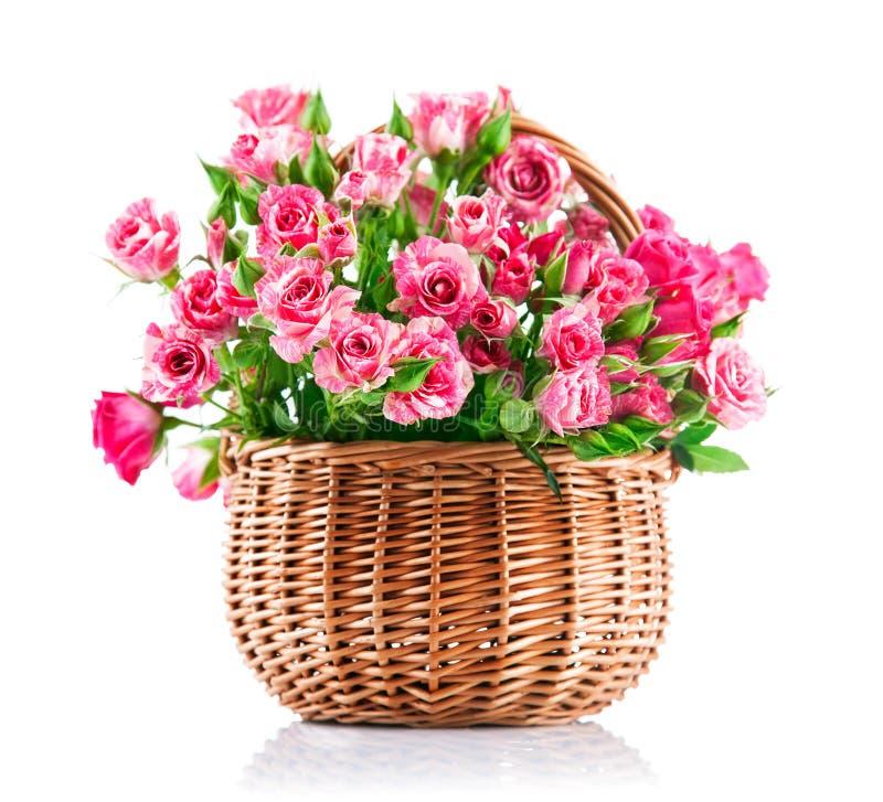 Rosa rosor för grupp i vide- korg arkivbild