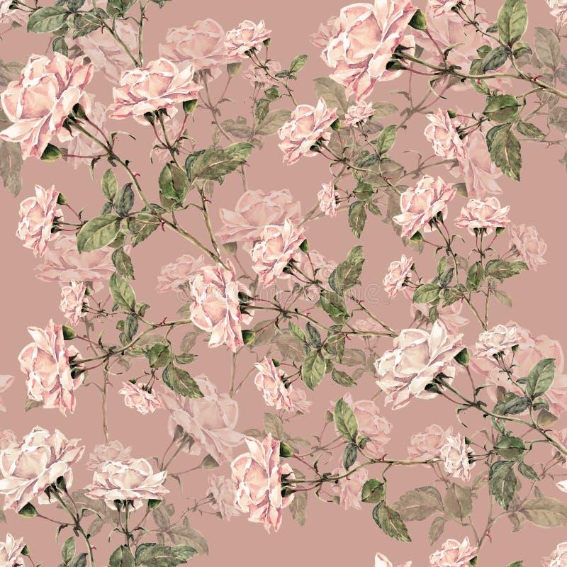 Rosa rosor för vattenfärg på en lila bakgrund seamless blom- modell stock illustrationer