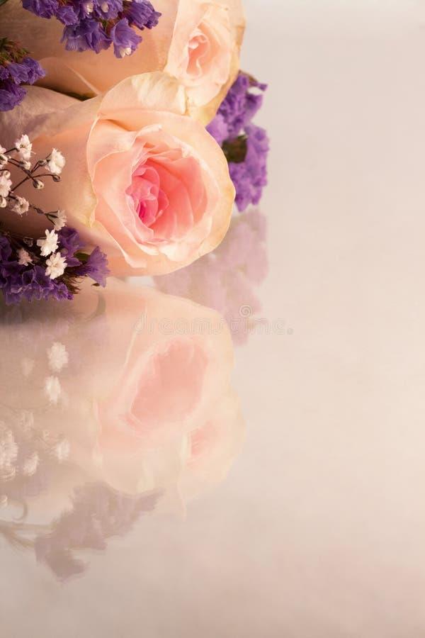 Rosa rosor och små vita blommor för lavendel och på en reflekterande bakgrund med kopieringsutrymme royaltyfri bild