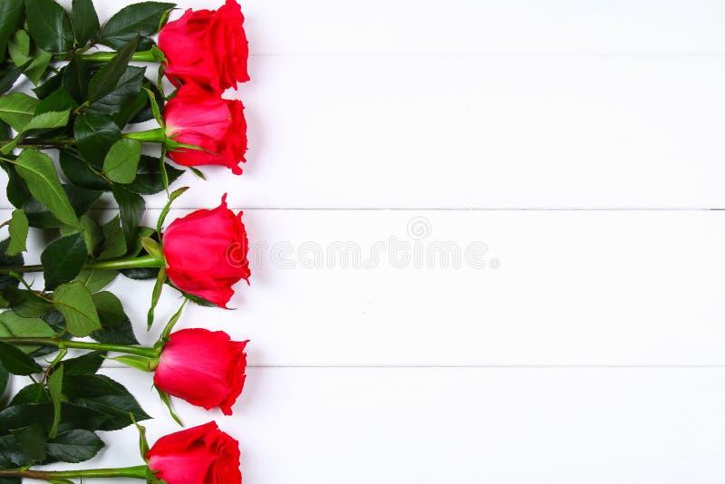Rosa rosor på en vit trätabell Kopiera utrymme för text Mall för mars 8, mors dag, valentin dag royaltyfri fotografi