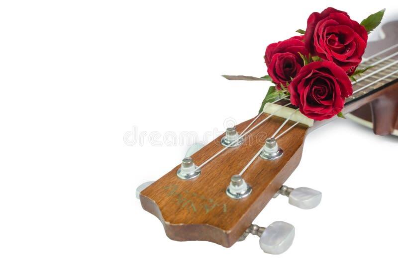 Rosa rossa e ukulele immagine stock libera da diritti