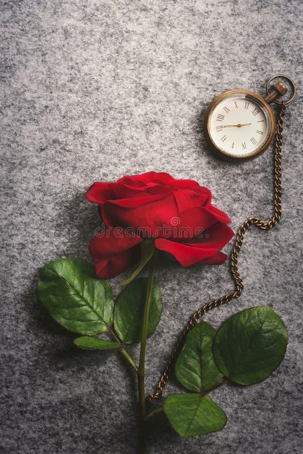Rosa rossa e un orologio d'annata della tasca immagine stock libera da diritti