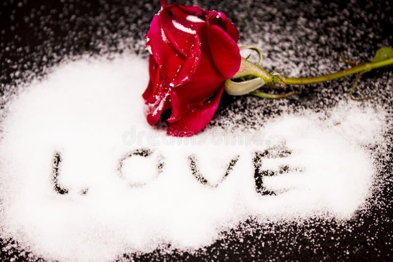 Rosa rossa in neve su un amore nero del fondo immagini stock