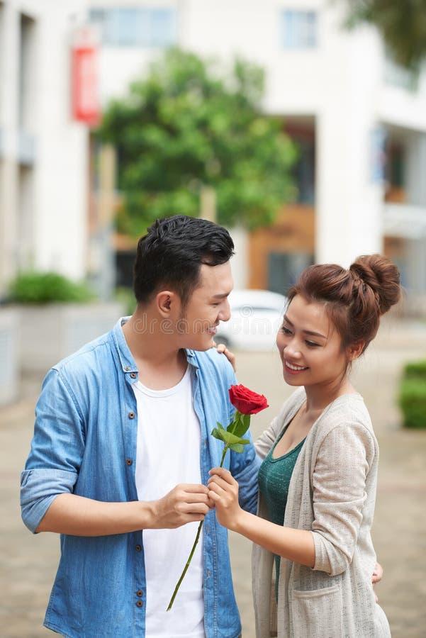 Rosa rossa per la data romantica fotografia stock