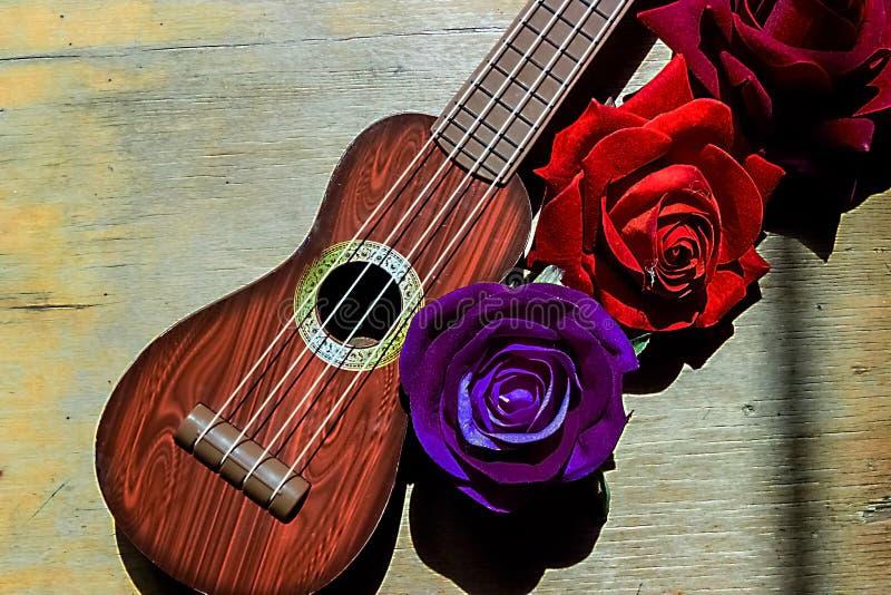 Rosa rossa su un collo e su un fretboard porpora delle ukulele della chitarra immagine stock libera da diritti