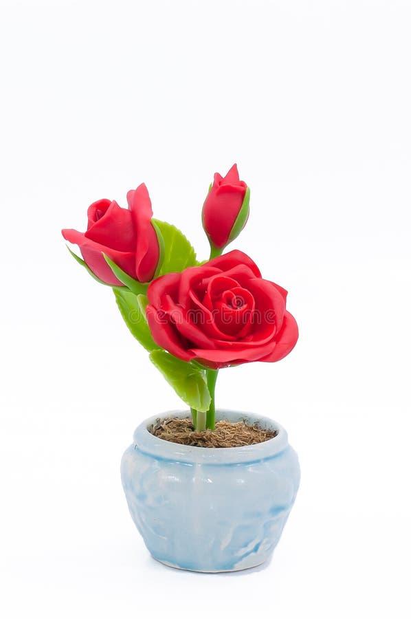 Rosa rossa in vaso immagine stock libera da diritti