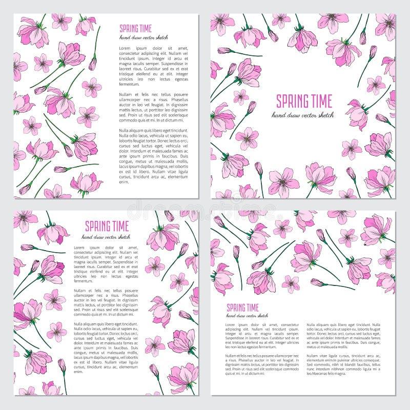 Rosa sakura do vetor, ilustração tirada da flor da flor de Apple mão colorida isolada no fundo branco, decorativo ilustração do vetor