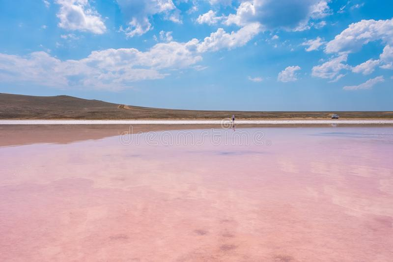 Rosa Salz See Koyashskoe, Krim stockfotografie