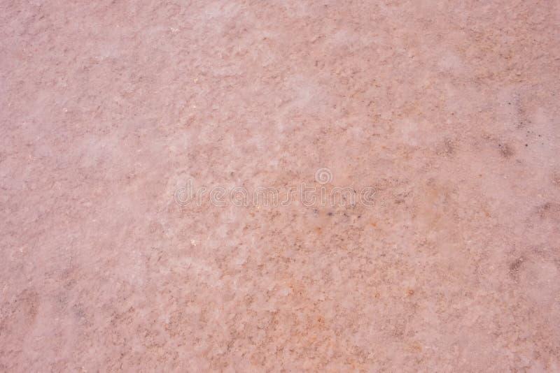 Rosa Salz See Koyashskoe, Krim stockbild