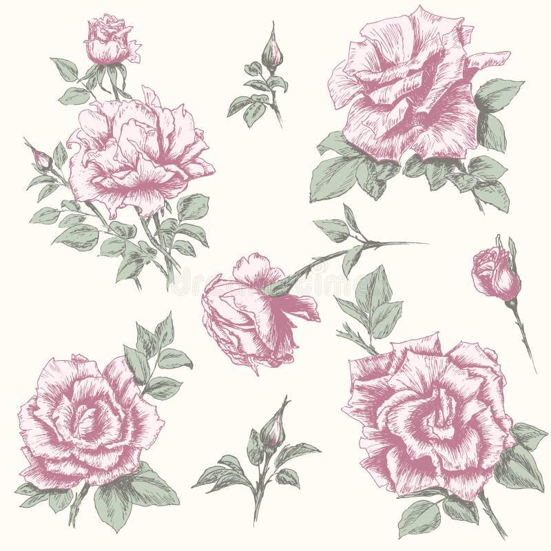 Rosa samling för tappning stock illustrationer