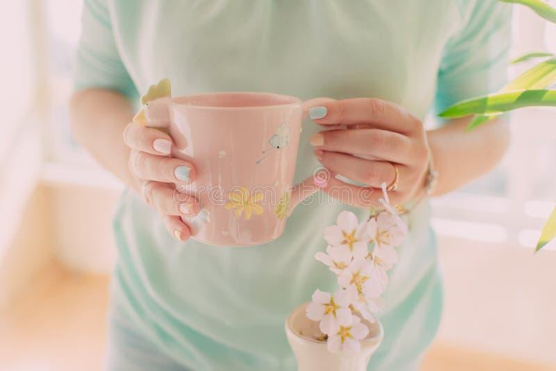 Rosa Schale in den weiblichen Händen lizenzfreies stockfoto