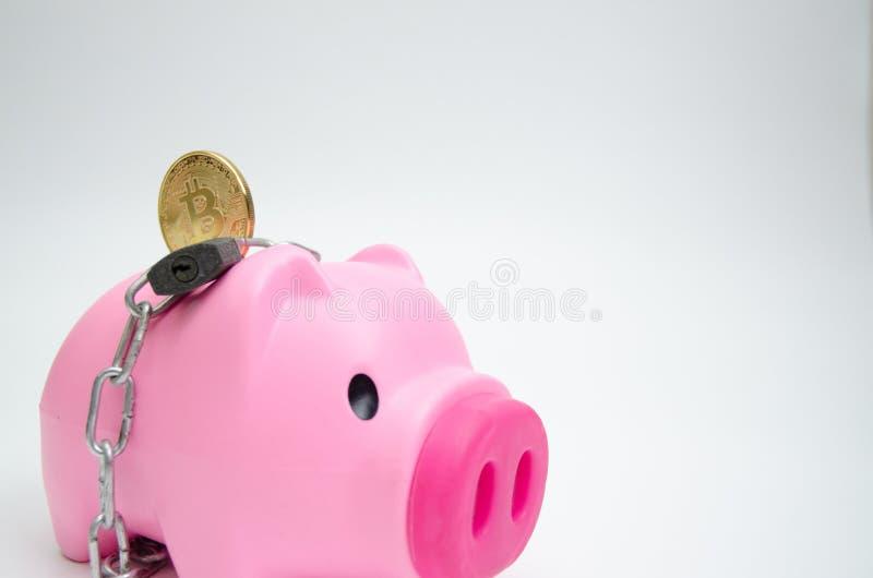 Rosa Schweinglas für Münze stockfoto