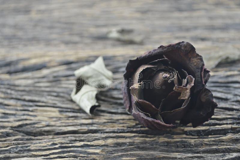 Rosa secca su fondo di legno, concetto del cuore rotto fotografia stock