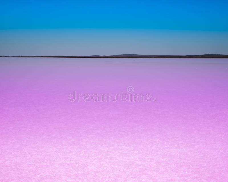 Rosa See mit blauem Himmel stockfotografie