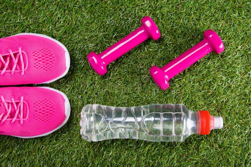 Rosa Sportturnschuhe und Dummköpfe für Eignung und eine Flasche Wasser vor dem hintergrund des Grases stockbilder