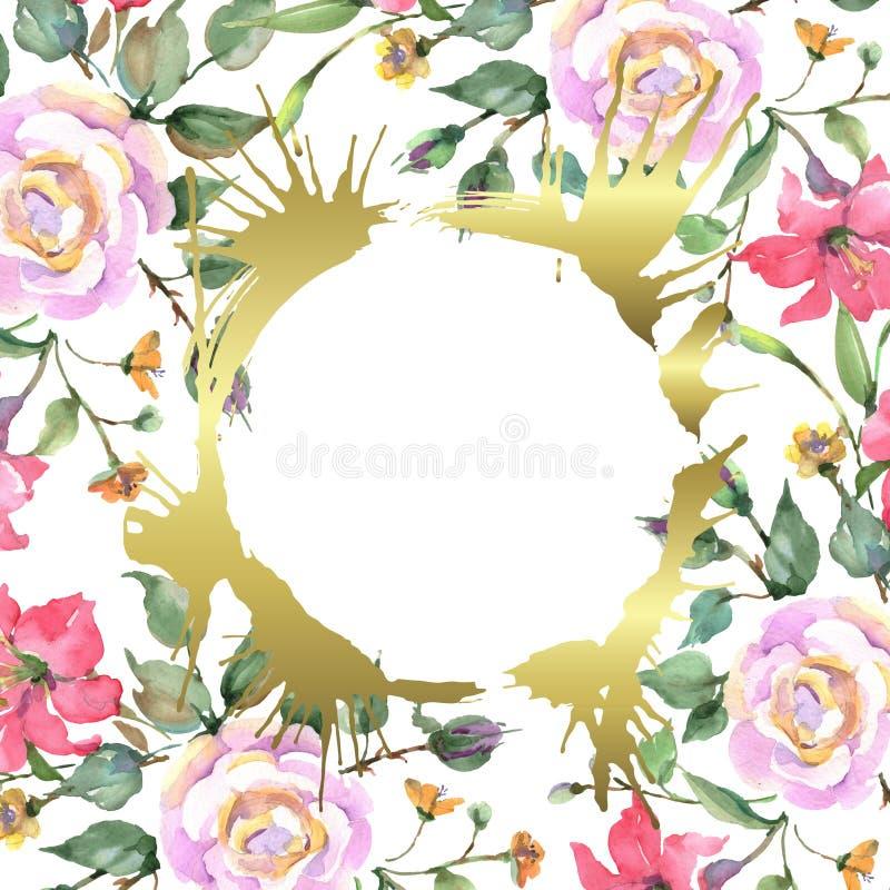Rosa stieg botanische mit Blumenblumen des Blumenstrau?es Aquarellhintergrund-Illustrationssatz Feldgrenzverzierungsquadrat lizenzfreie abbildung