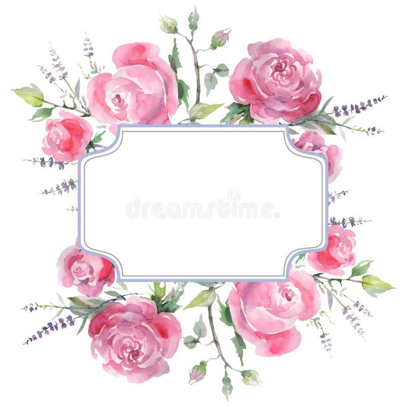 Rosa stieg botanische mit Blumenblumen des Blumenstrau?es Aquarellhintergrund-Illustrationssatz Feldgrenzverzierungsquadrat vektor abbildung