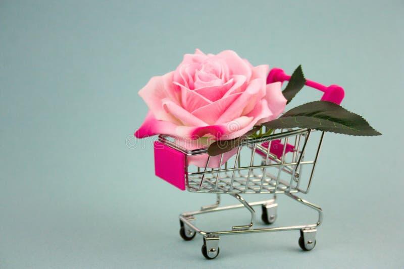 Rosa stieg in Einkaufswagen lizenzfreie stockfotos