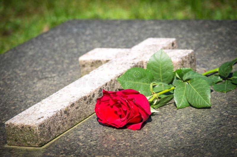 Rosa su una tomba immagini stock libere da diritti