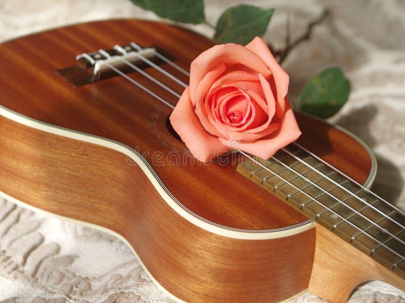 Rosa sulle ukulele fotografie stock