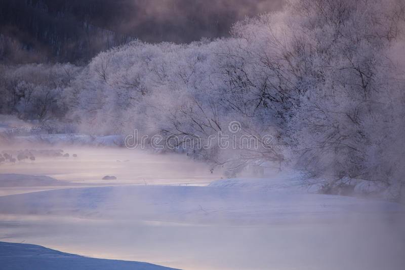 Rosa tönte Hoar Frost und glühenden Fluss bei Sonnenaufgang lizenzfreie stockbilder