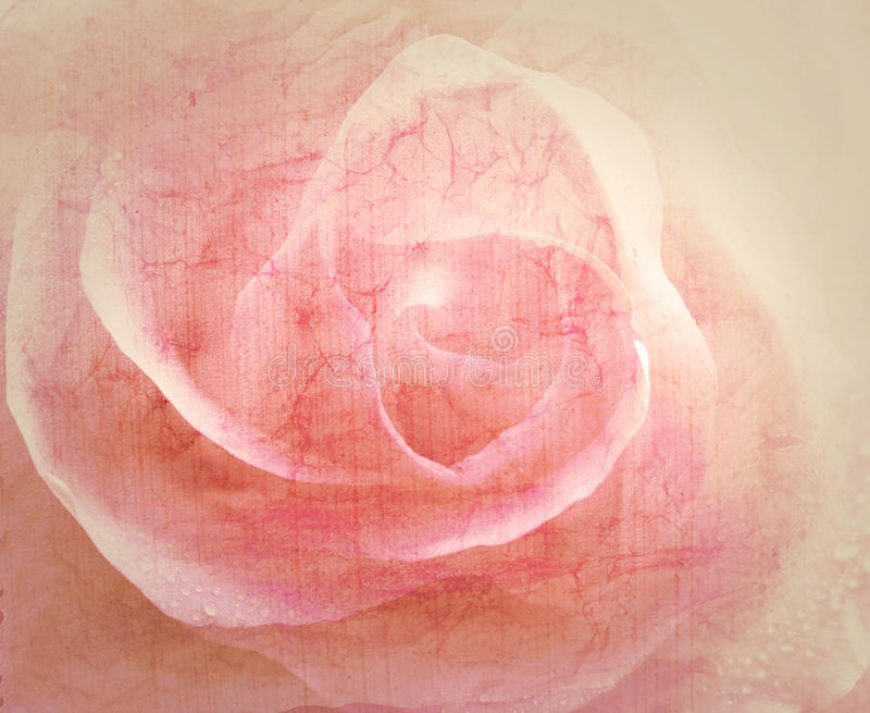 Rosa tappningbakgrund arkivbild