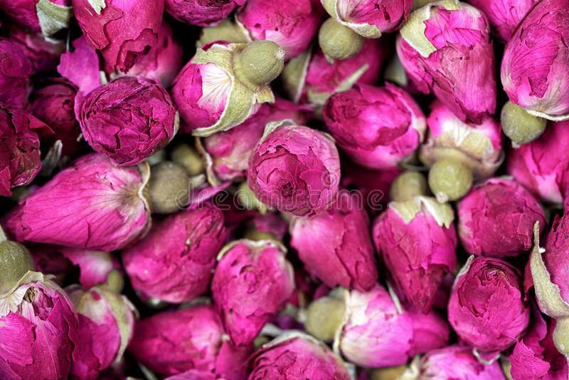 Rosa te - torkade rosebudsblommor texturerar closeupen royaltyfri fotografi