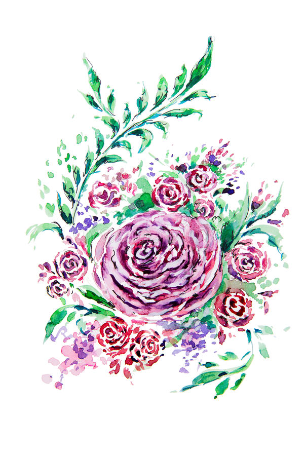 Rosa teckning för vattenfärg vektor illustrationer