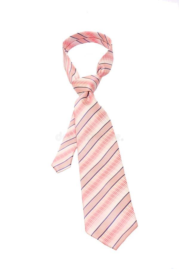 rosa tie arkivbilder