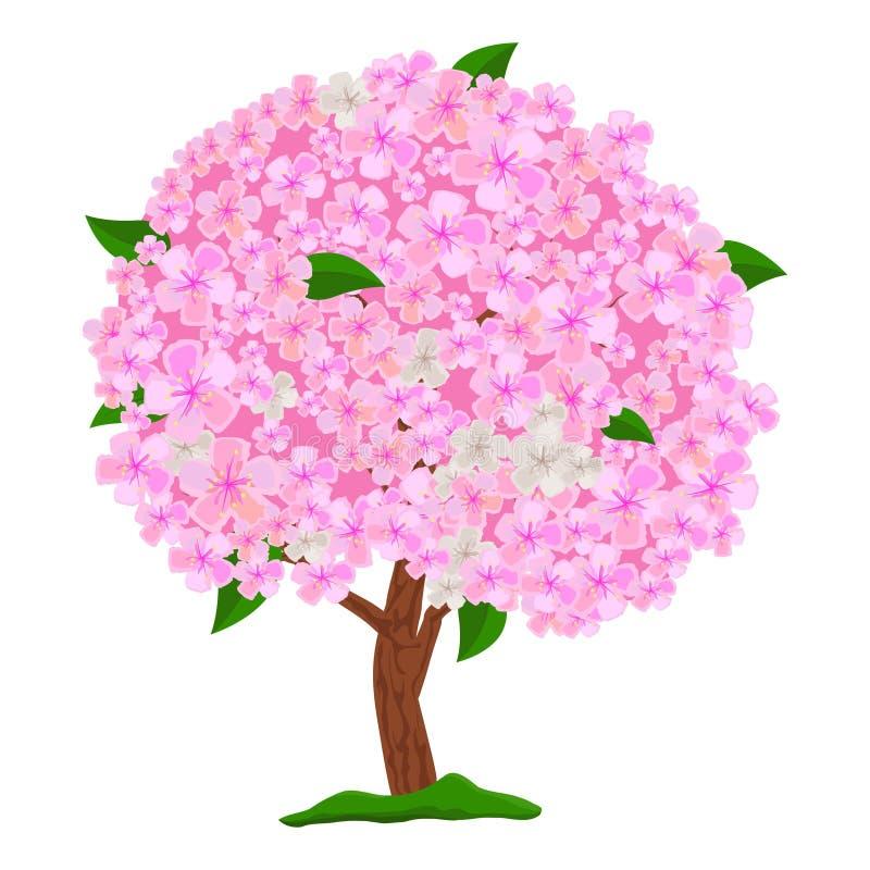 Rosa träd för blomning som isoleras på vit bakgrund Blommande träd för vår med blommor Apple träd, körsbär och sakura royaltyfri illustrationer