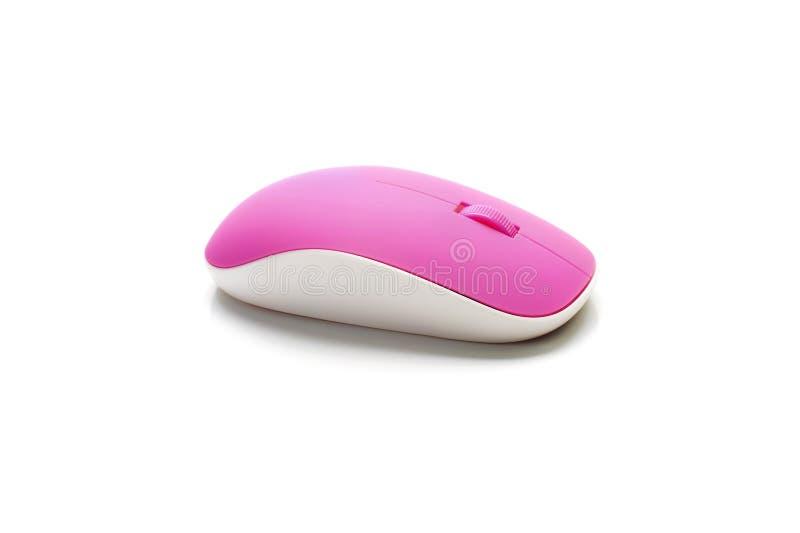 Rosa trådlös isolerad vit bakgrund för mus dator royaltyfri fotografi