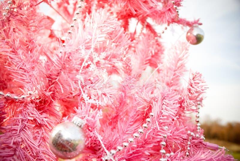 rosa tree fotografering för bildbyråer