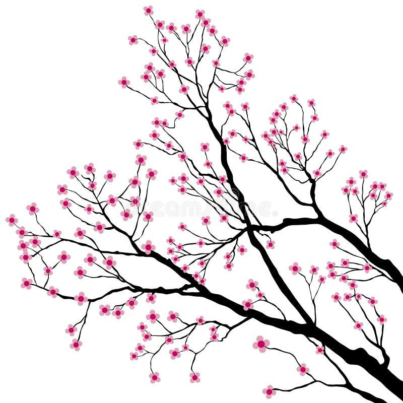 rosa tree för filialblommor vektor illustrationer