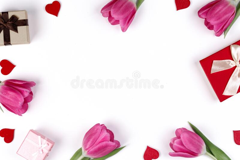 Rosa tulips-hjärtepresentkort arkivfoton
