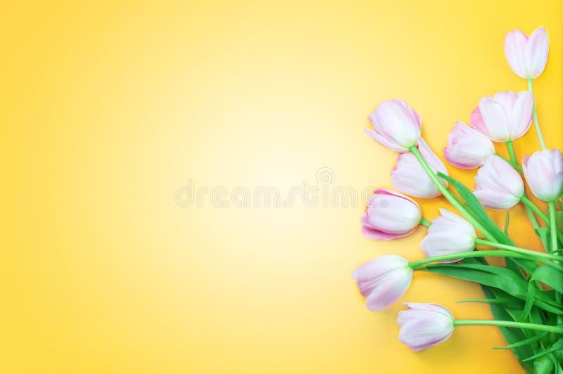 Rosa tulpanblommor på gul bakgrund Lycklig påsk, vår arkivfoton