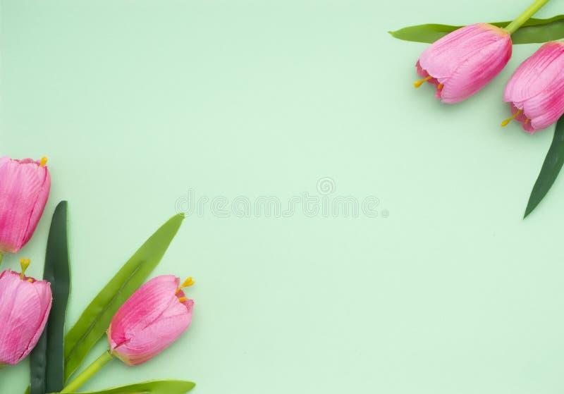 Rosa tulpandokument med olika förslagbakgrund royaltyfria foton