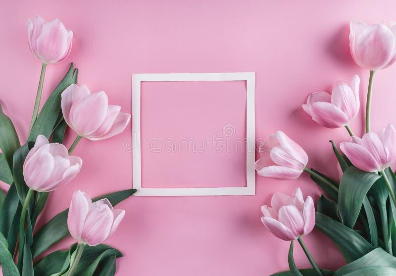 Rosa Tulpenblumen und Blatt Papier über hellrosa Hintergrund Heilig-Valentinsgruß-Tagesrahmen oder -hintergrund