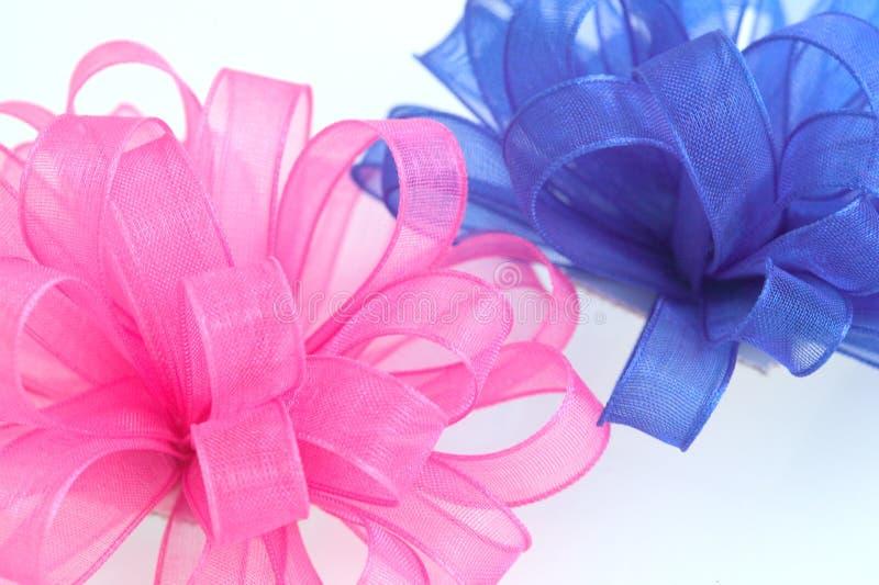 Rosa- Und Blaubögen Stockbild
