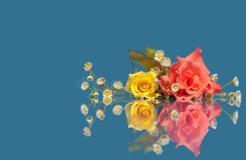Rosa und Gelb stiegen mit weißen wilden Blumen lizenzfreie stockfotografie