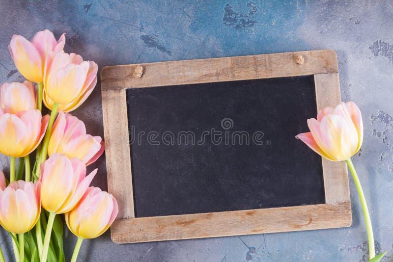 Rosa und gelbe Tulpen lizenzfreie stockfotos