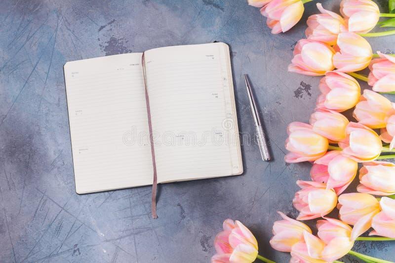 Rosa und gelbe Tulpen lizenzfreies stockbild