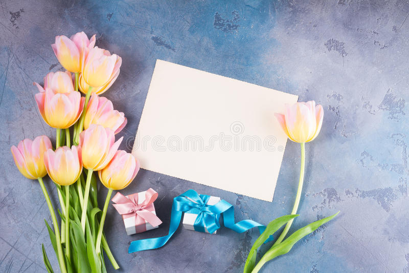 Rosa und gelbe Tulpen stockfotografie